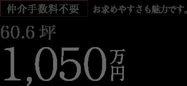 仲介手数料不要 60.6坪 1,050万円